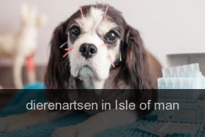 Dierenartsen in Isle of man